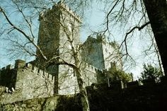 Knappogue Castle, Co. Clare