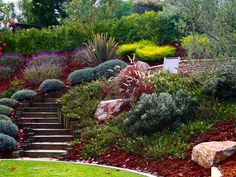 Hill Landscaping Ideas | hillside steps. Pretty wide winding steps down steep hill, filled in with pretty and low maint plants