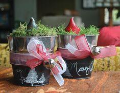 DIY Christmas Sprouting Pots | Capper's Farmer