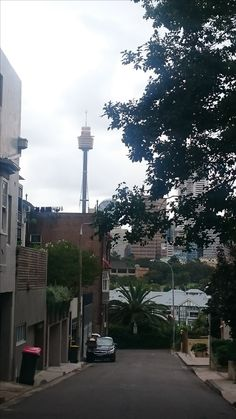 Views from Potts Point