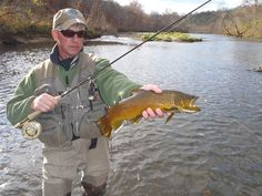 1000 images about arkansas on pinterest arkansas for Best trout fishing states
