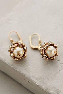 Gilded Acorn Earrings