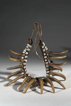 Ute bear claw necklace.  AMNH