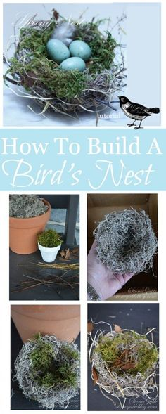 Grab a glue gun, some twigs or moss, and faux robin eggs for this gorgeous and quick spring decoration! Bird Nest Craft, Bird Crafts, Nature Crafts, Easter Crafts, Bird Nests, Easter Decor, Deco Nature, Spring Birds, Spring Home