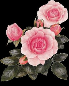flowers animation images | animated images flowers gif love friends facebook/animated gif flowers ...