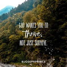 God wants you to thrive, not just survive.