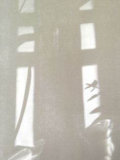 light and shadow - color palette and mood board inspiration. Shades Of White, Black And White, Shadow Play, Shadow Art, Window Shadow, Beige Aesthetic, Slow Living, Light And Shadow, Natural Light