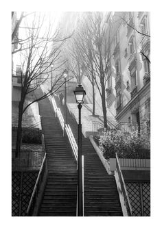 Winter light, Montmatre Paris by Carla Coulson...I remember the first time I went to Sacre Coeur with my Mom, we were both so struck by the beauty of Montmarte