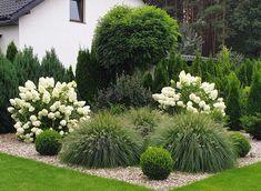 Front Yard Garden Design, Front Garden Landscape, Garden Design Plans, Outdoor Landscaping, Front Yard Landscaping, Hydrangea Landscaping, Back Gardens, Outdoor Gardens, Balcony Plants
