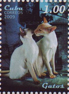 Cuba - 2009