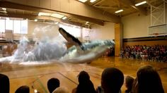 Scifi to SciFact Indeed - Magic Leap's Whale - Augmented Reality In The Gym