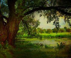 Serene place .... | Irene | Flickr