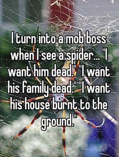 In my case this is when I see a spider, a bug, a human that annoys me... I generally am into mob boss mode all day long...                             - One Goat