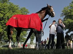 2012 Kentucky Derby: Bodemeister emerges as early favorite #horse