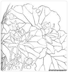 Лотос. Контурный рисунок.     Иллюстрации взяты из интернет-магазина  Ebay.com                                                                     ...