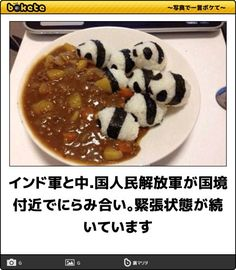 cute rice pandas and curry yumm Haha Funny, Funny Cats, Funny Animals, Funny Stuff, Funny Images, Funny Photos, Cute Food, Good Food, Japanese Funny