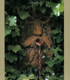 the mighty guardian of the garden....hidden but protecting all