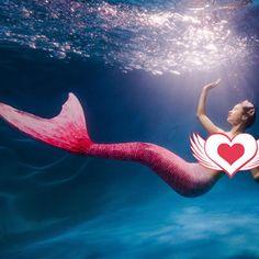 ==> [Free Shipping] Buy Best Zeemeerminstaart Tail Mermaid Adult Costumes Cosplay Bikini Set Zeemeerminnen Staart Met Monofin Mermaid Tail Costume cS20 Z40 Online with LOWEST Price | 32820219350