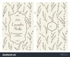 The book cover design with floral elements. Botanical book cover with lavender flower pattern. Calligraphic text - Lavender Herbs. Decorative frame or border for covers. Vector illustration.