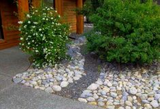 Front yard river rock landscaping ideas are easy ways to eliminate maintenance. Adding a small gravel river bed is simple way to dress up this simple design.