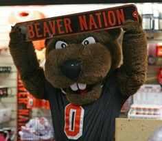 Oregon State Beaver