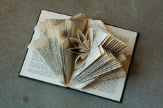 I was ridiculously nervous and anxious in the week leading up to teaching my first altered book workshop, but things could not have gone better with the class. There were six people in attendance, … Folded Book Art, Paper Book, Paper Art, Cut Paper, Old Book Crafts, Book Page Crafts, Recycled Books, Altered Book Art, Book Sculpture