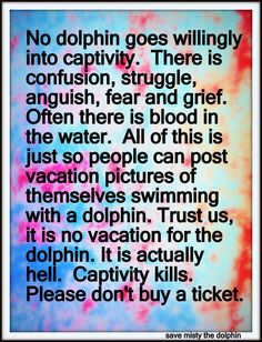 Please don't buy a ticket to a dolphin show.  Put an end to endless slaughter.