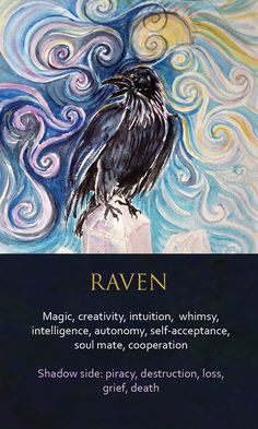 and I was watching this raven here as they are different kind of ,with the grey heads not like in London but like with two colors and this two here are not screaching any more ,not even once since actually that one day in the garden when one of them was Raven Spirit Animal, Animal Spirit Guides, Spirit Animal Tattoo, Fox Spirit, Raven Totem, Raven Art, Animal Meanings, Animal Symbolism, Choucas Des Tours