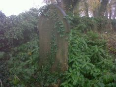 S The Graveyard Book, Arch, Gothic, Fiction, Outdoor Structures, Garden, Longbow, Goth, Lawn And Garden