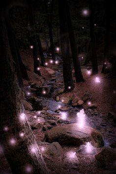 faery lights