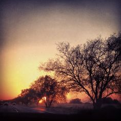 Sunset : 6:30