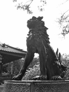 "Oyama Shrine (尾山神社) honors ""Toshiie Maeda"" (前田利家), a warrior of the civil war period and his wife ""Matsu"" (まつ). This Komainu is very smart and made of bronze.  http://www.oyama-jinja.or.jp/"