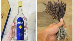 Vyrobte si jednoduchú domácu dezinfekciu: Ochráni vás rovnako ako tá z lekárne a nemusíte ju zháňať po obchodoch! Vodka Bottle, Water Bottle, Smart Water, Kefir, Herbs, Drinks, Smoothie, Alcohol, Drinking