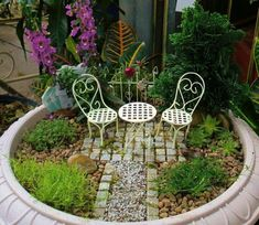 Mini jardin minis jardins pinterest minis for Jardin japonais miniature exterieur