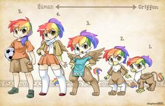 OC Types-Rainbow Feather by shepherd0821.deviantart.com on @deviantART