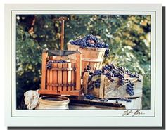 Perfect! This grape press gore wine still life art print poster fit nicely into any country kitchen and restaurant. It will make a pretty addition to any kitchen. What are you waiting for grab this charming poster for its high quality gloss finish paper with archival quality inks which ensures long lasting beauty and color fading.