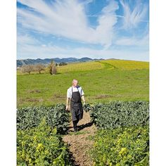 We are very excited for FARM to participate at @eatdrinksf's Grand Tasting on Friday, August 26! Executive Chef Aaron Meneghelli is basing his dish around what we pull out of the garden next Thursday! #eatdrinksf #foodie #festival #culinary #farm #chef