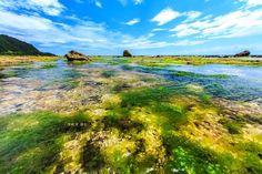 Shihlang Diving Area. Green Island  #Taiwan 綠島 石朗潛水區