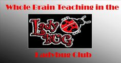 Please help me become whole brain teaching certified and follow my blog.