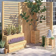 Freeport Park The 2 Piece Olivia Wood Trellis is an ideal product for creating a feature in any garden. Can also be used for separating areas. Set: Set of Orientation: Horizontal Wood Trellis, Garden Trellis, Obelisk Trellis, Arch Trellis, Tomato Trellis, Vine Trellis, Trellis Ideas, Wooden Planters, Planter Boxes