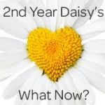 16 Ideas – 2nd Year as a Daisy Girl Scout What Now?