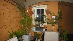Grandes ideas en jardines, terrazas, patios...