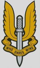 Cross Stitch Chart Pattern of UK SAS Badge