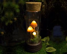 Mushrooms Night Light - Mashroom lamp - Polymer Clay Fungi - moss and succulent - fairy decor - LED Glass Flask, Glass Vials, Light For The World, Handmade Lamps, Sculpture, Fungi, Night Light, Biodegradable Products, Polymer Clay
