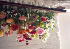 Tin Can Studios — DIY: HANGING FLORAL CHANDELIER