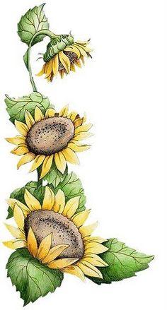 .....................................................................: Flores-Implima e pinte!