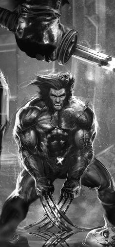 Wolverine by Dave Wilkins
