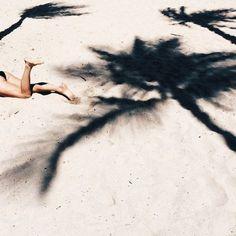 Palm Tree Shadows On Beach | via FleurDeMonde.com | Beach Inspiration and Motivation