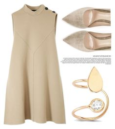 """Simplicity"" by amorium ❤ liked on Polyvore featuring Derek Lam, Gianvito Rossi, Amorium and beige"