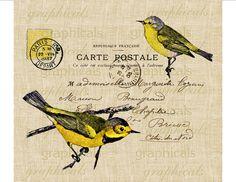 Paris Carte Postale yellow brown birds pillows cards
